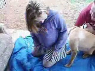 Fuck girls dogs missionary