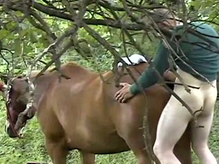 Teen gets ass fucked by horse Search - XVIDEOSCOM