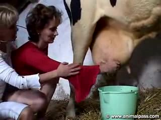 Women and cow sex xxx