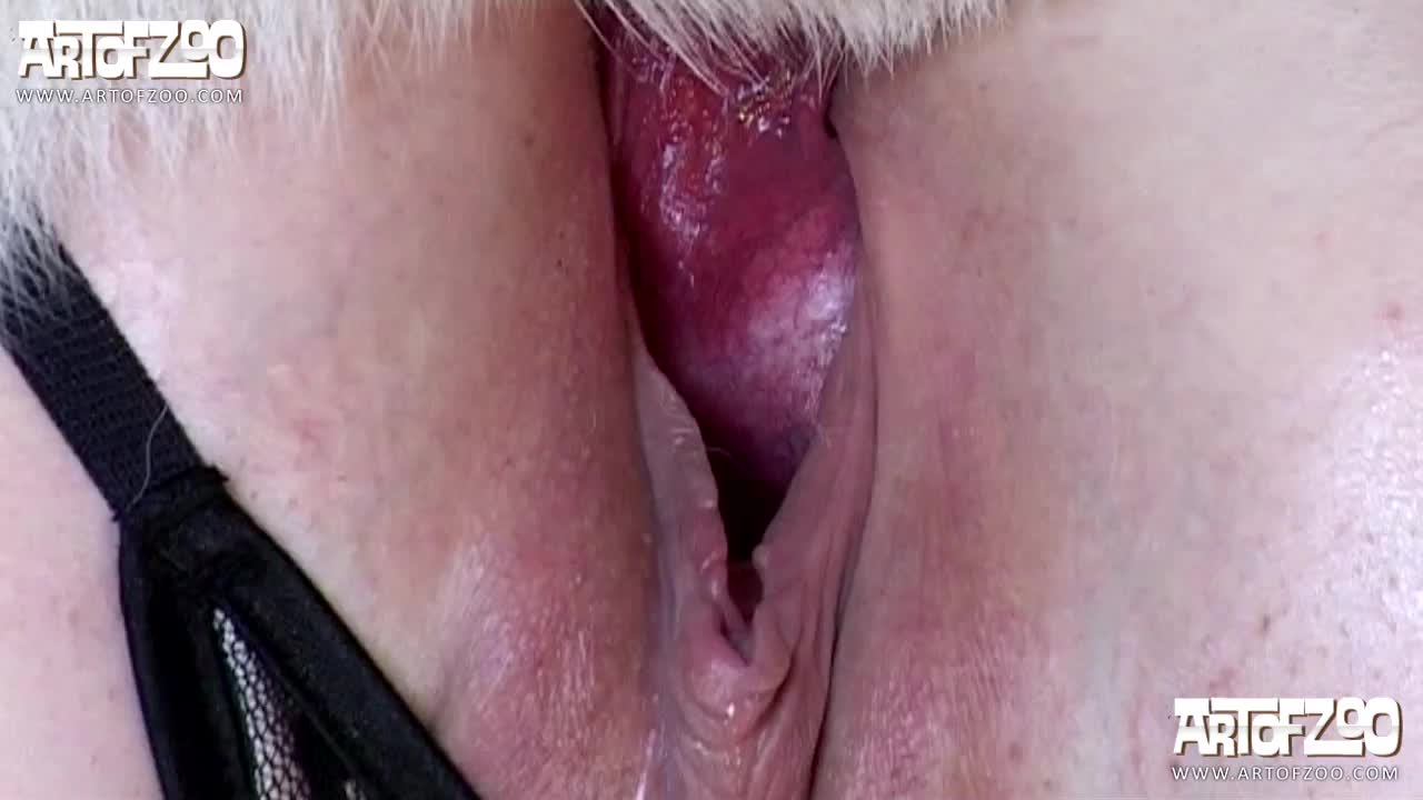 porn tube sex video