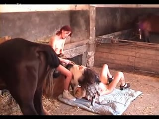 Threesome With Horse