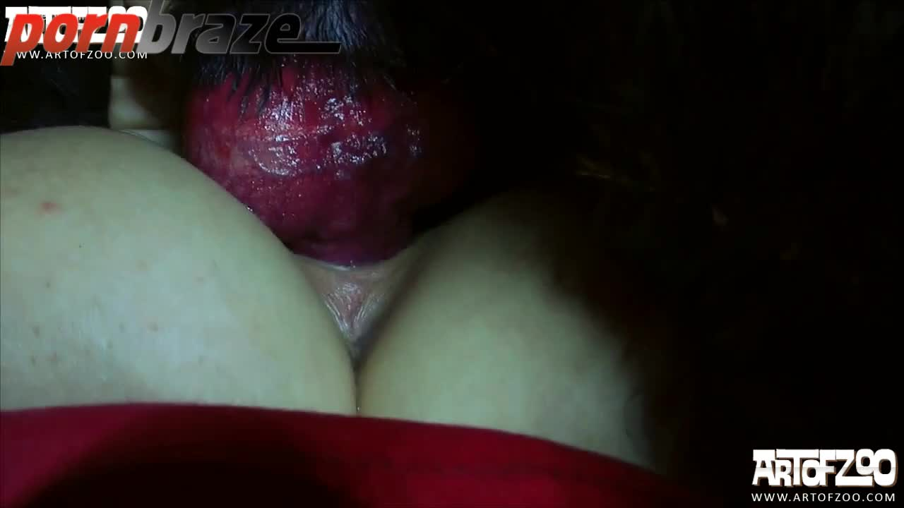 [ Art Of Zoo ] Whore Babe Fucking with Hairy black dog - HD Porn - Porn Tubes Video Sex | Pornbraze.com [19:13x720p]->
